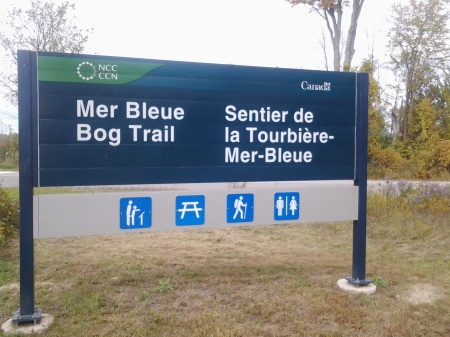 MerBlueSign